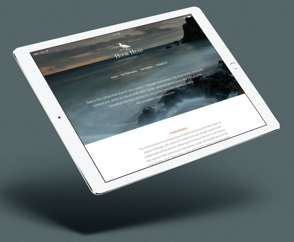 Hook Head website design wexford