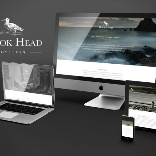 Mobile ready web design. Website design wexford pixelpod.
